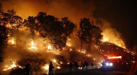 Четиридесет и двама души загинаха в опустошителните пожари в Северна Калифорния