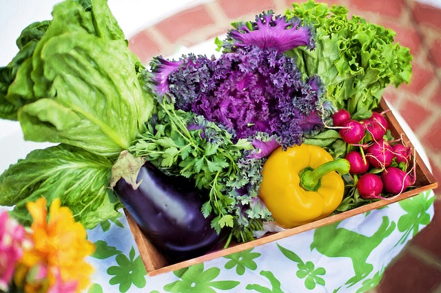 Значението на растителната диета