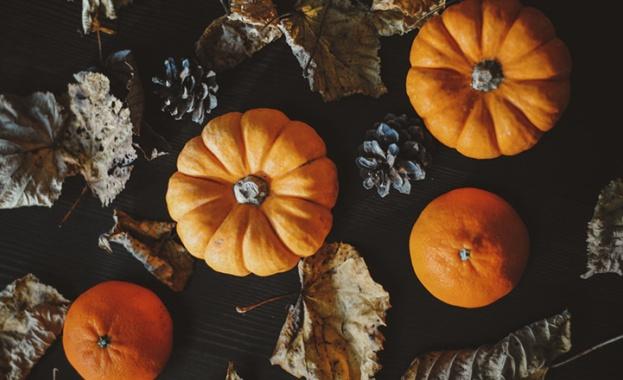 Тази есен наблегнете на тиквата!