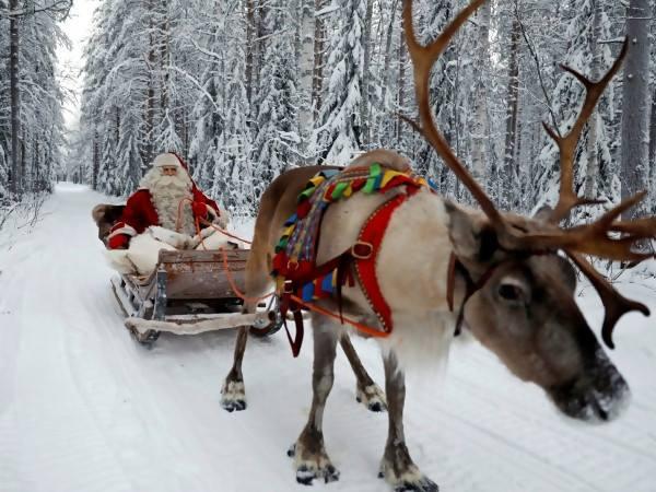 Дядо Коледа и впрягът му с елени пристига от Лапландия